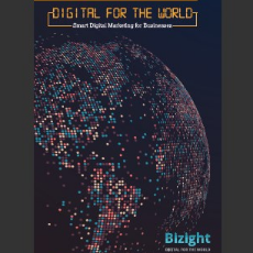 Bizight-Brochure